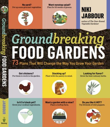 Read more about the article Groundbreaking Food Gardens Giveaway!