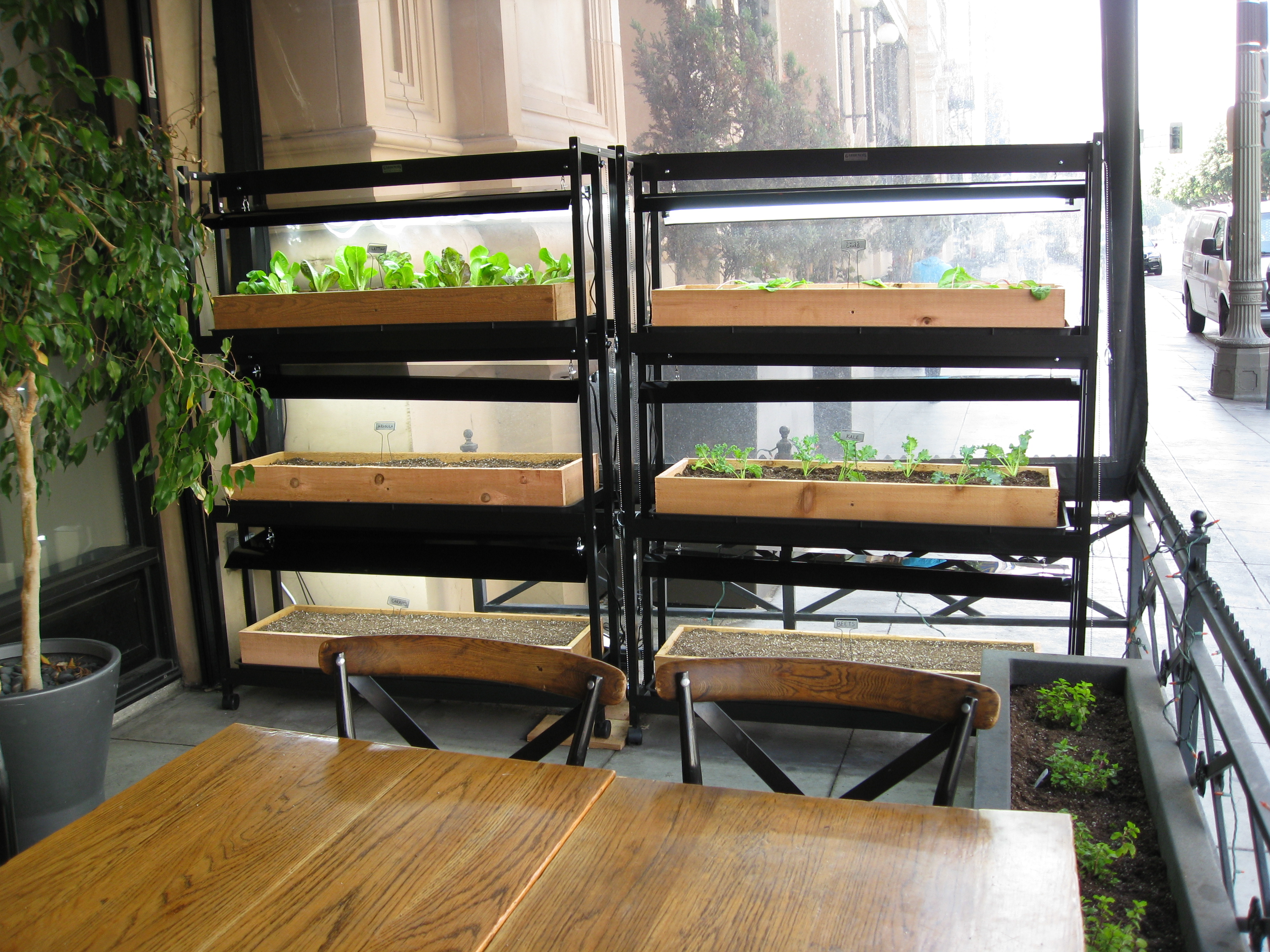 Vertical garden planters with grow-lights help produce lettuce, chard, arugula and more for the kitchen.