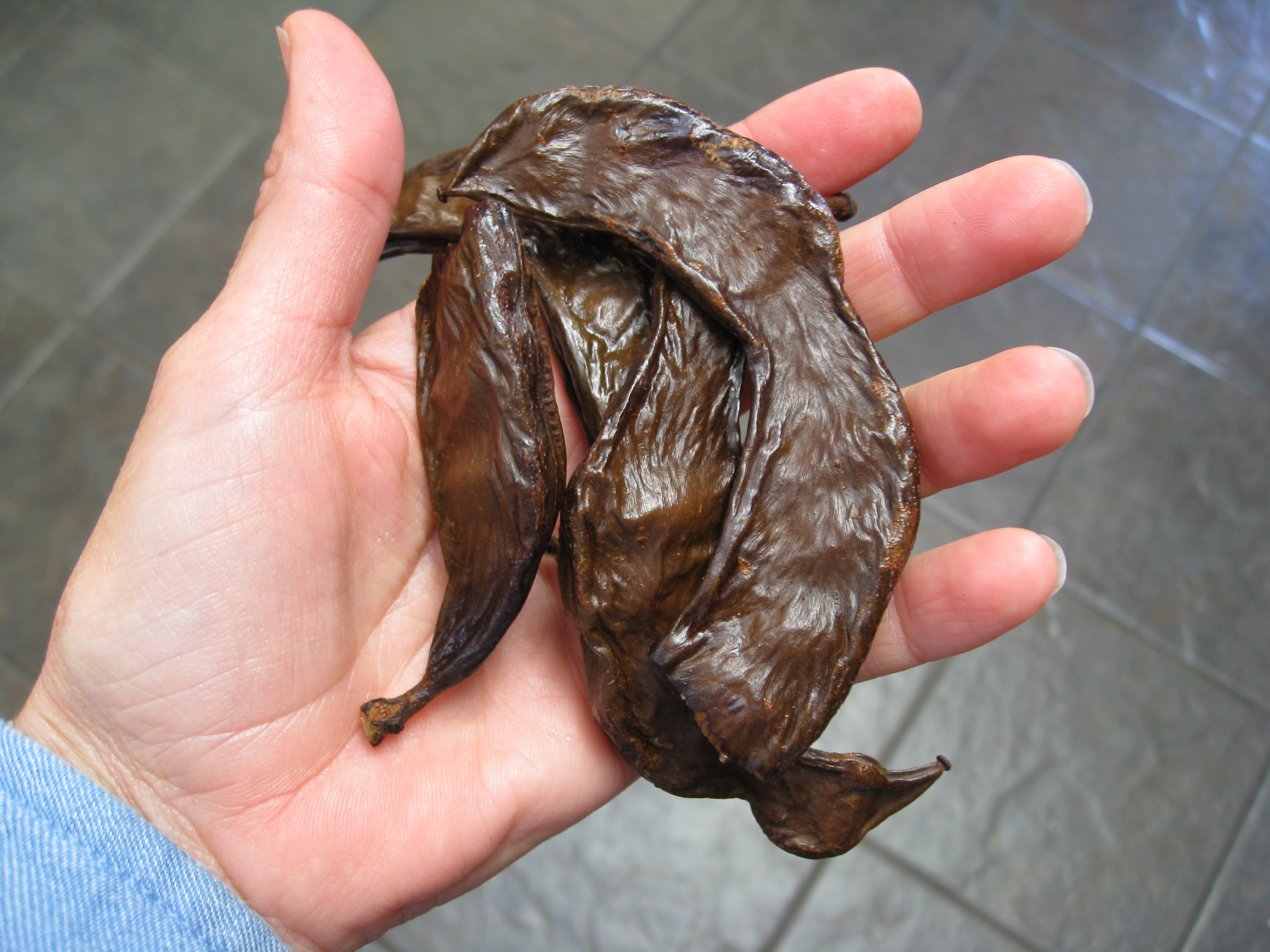 Technically a fruit, carob pods are eaten while the seeds are discarded.
