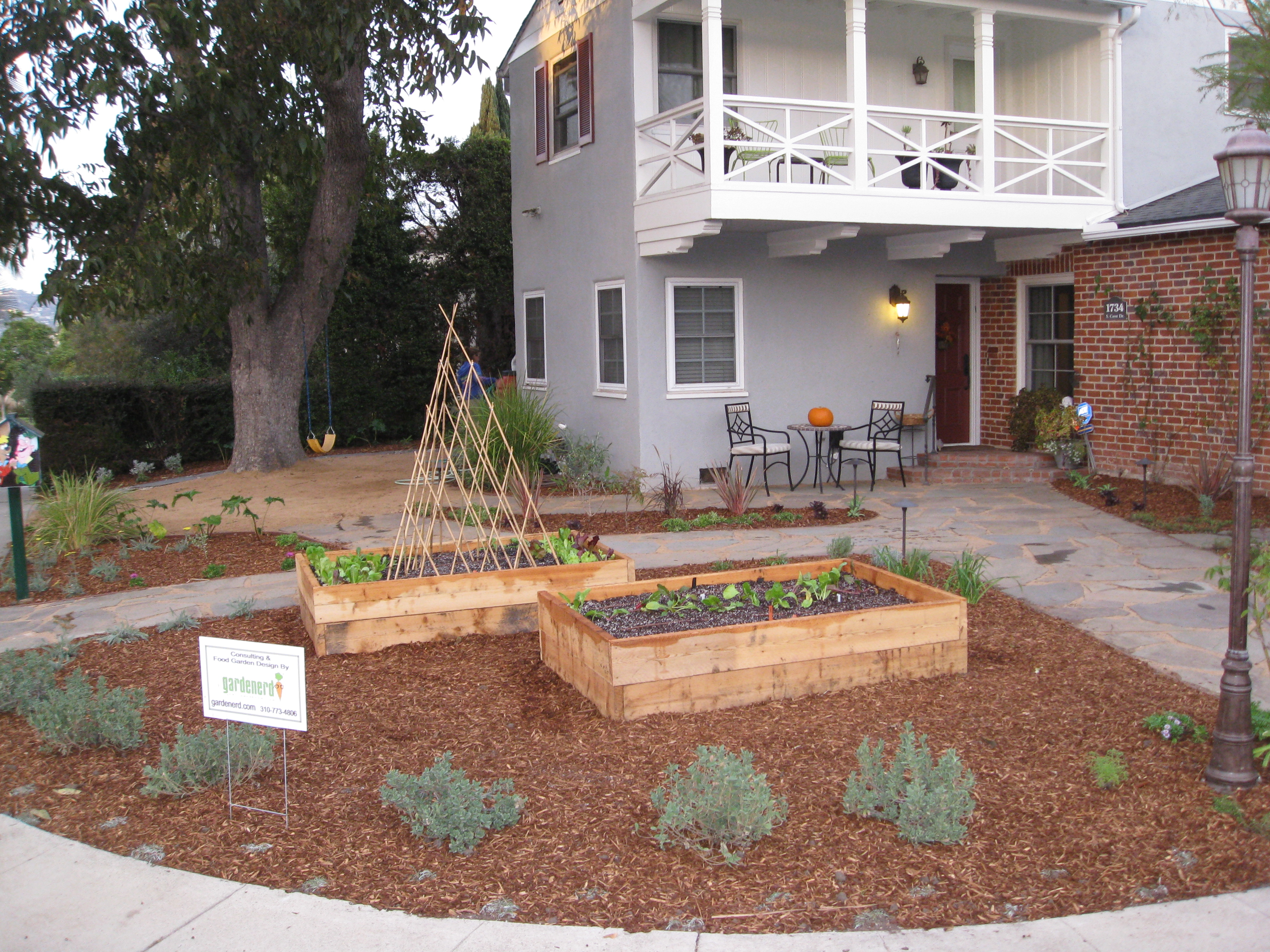 Two new veggie beds surrounded by natives and colorful drought tolerant plants.