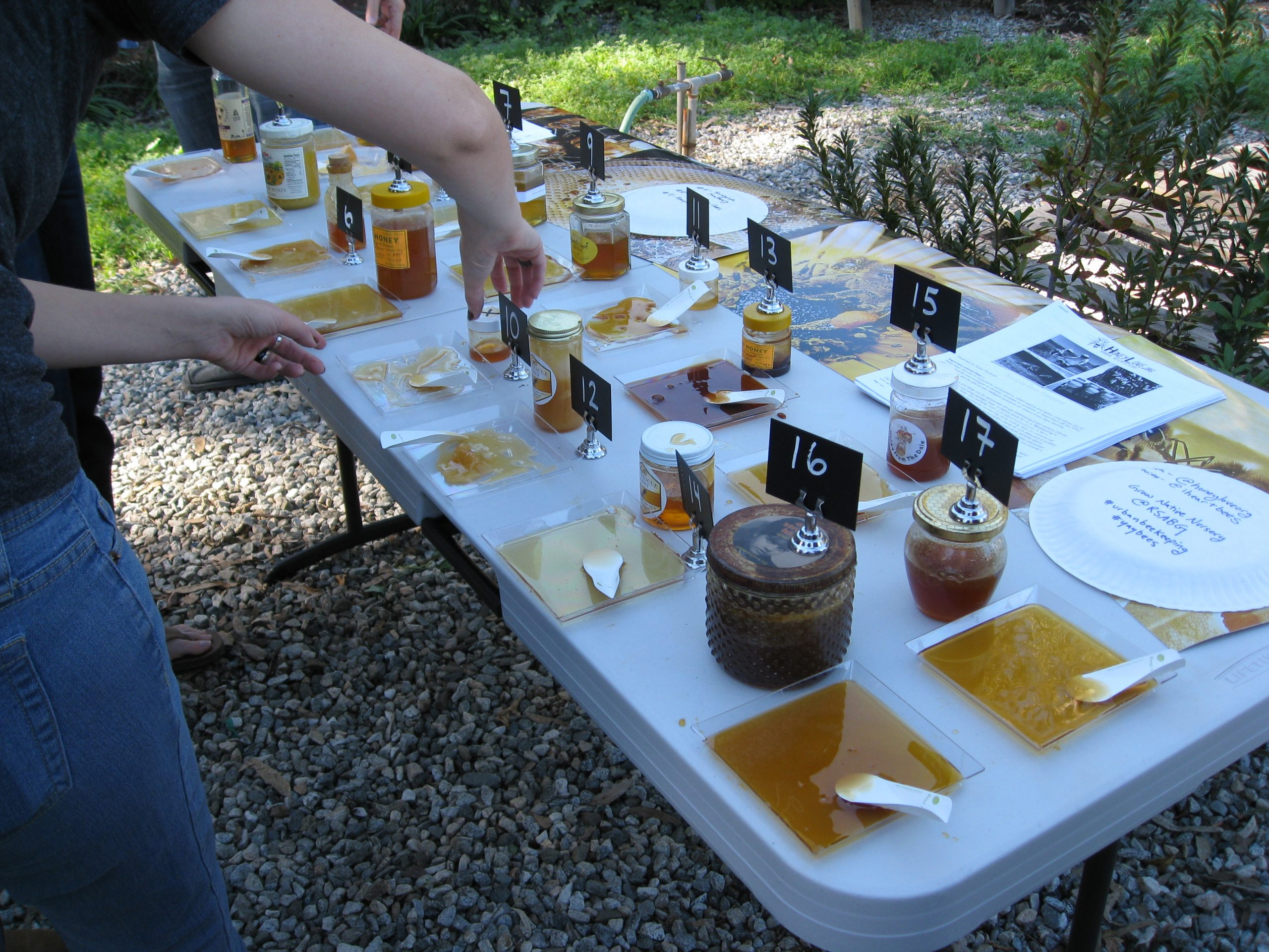 Read more about the article Field Trip: Honey Tasting Competition