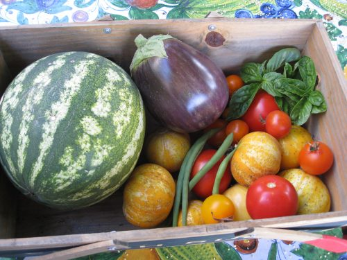 Read more about the article Benefits Of Community Supported Agriculture (CSA)