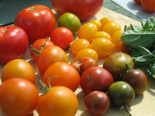 Read more about the article When to Harvest Garden Vegetables