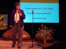 Dr. Elaine Ingham shares the amazing restoration work she's doing.