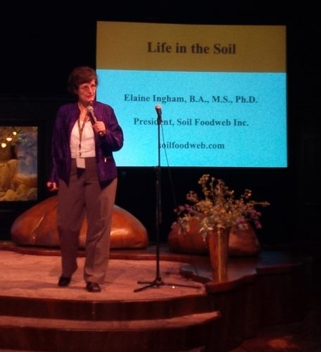 Read more about the article Urban Soil Summit Review – Part 1