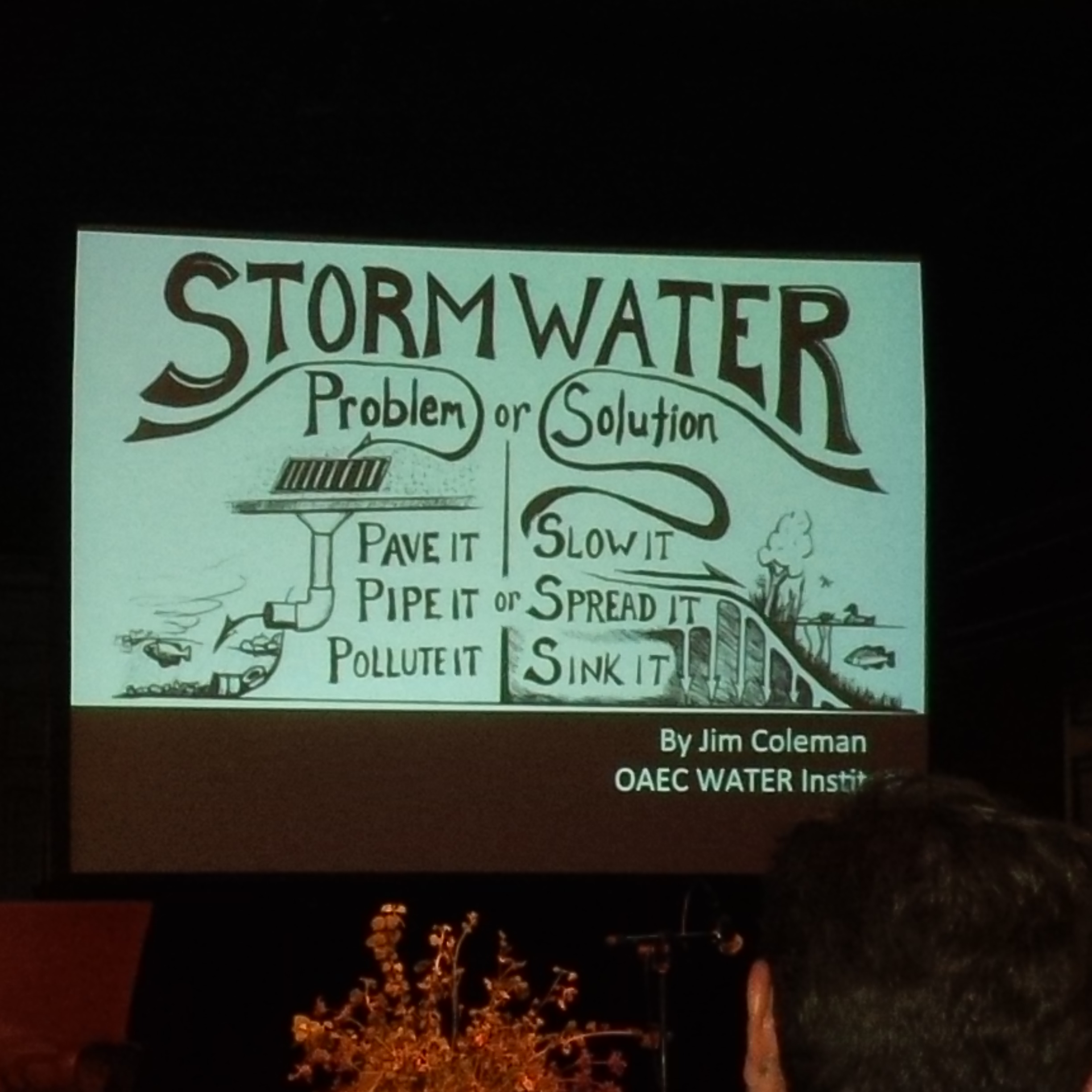 What we need to design our gardens to deal with our storm water