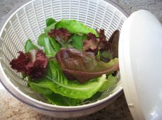 Lettuce prepped to store food