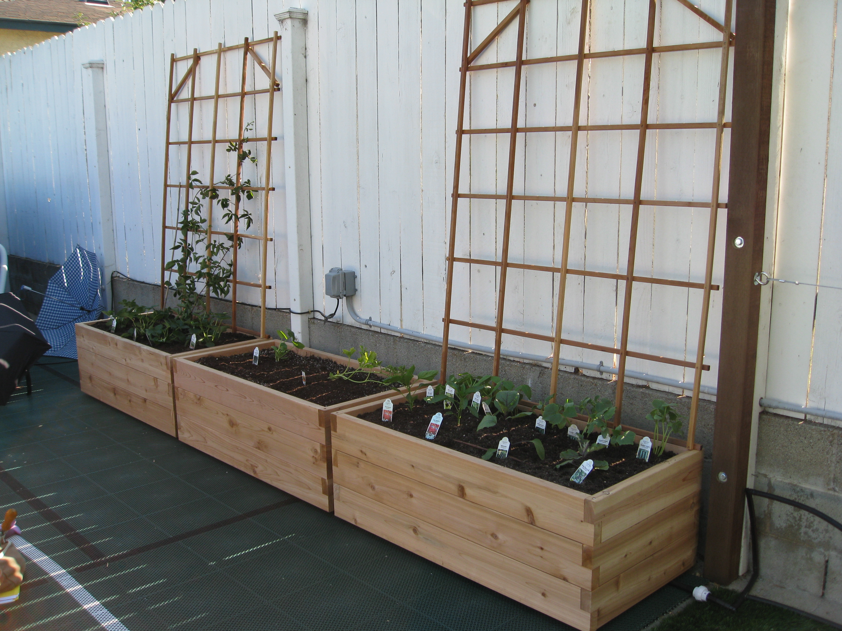 The new garden will provide home-school lessons for the kids and food for the table.