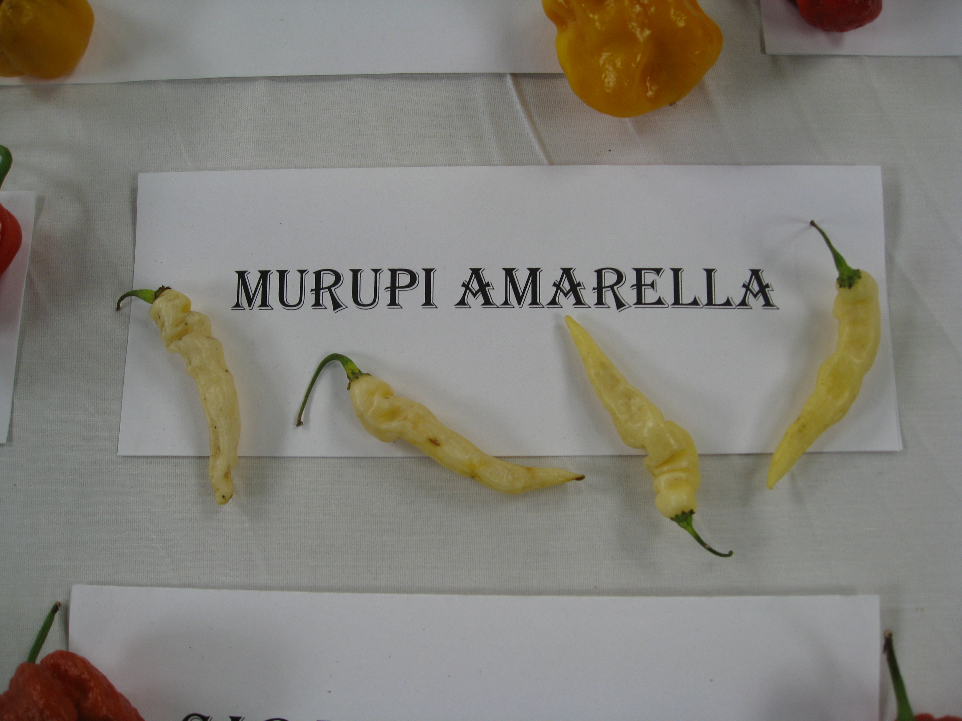 Exotic peppers abound at the Heirloom Expo