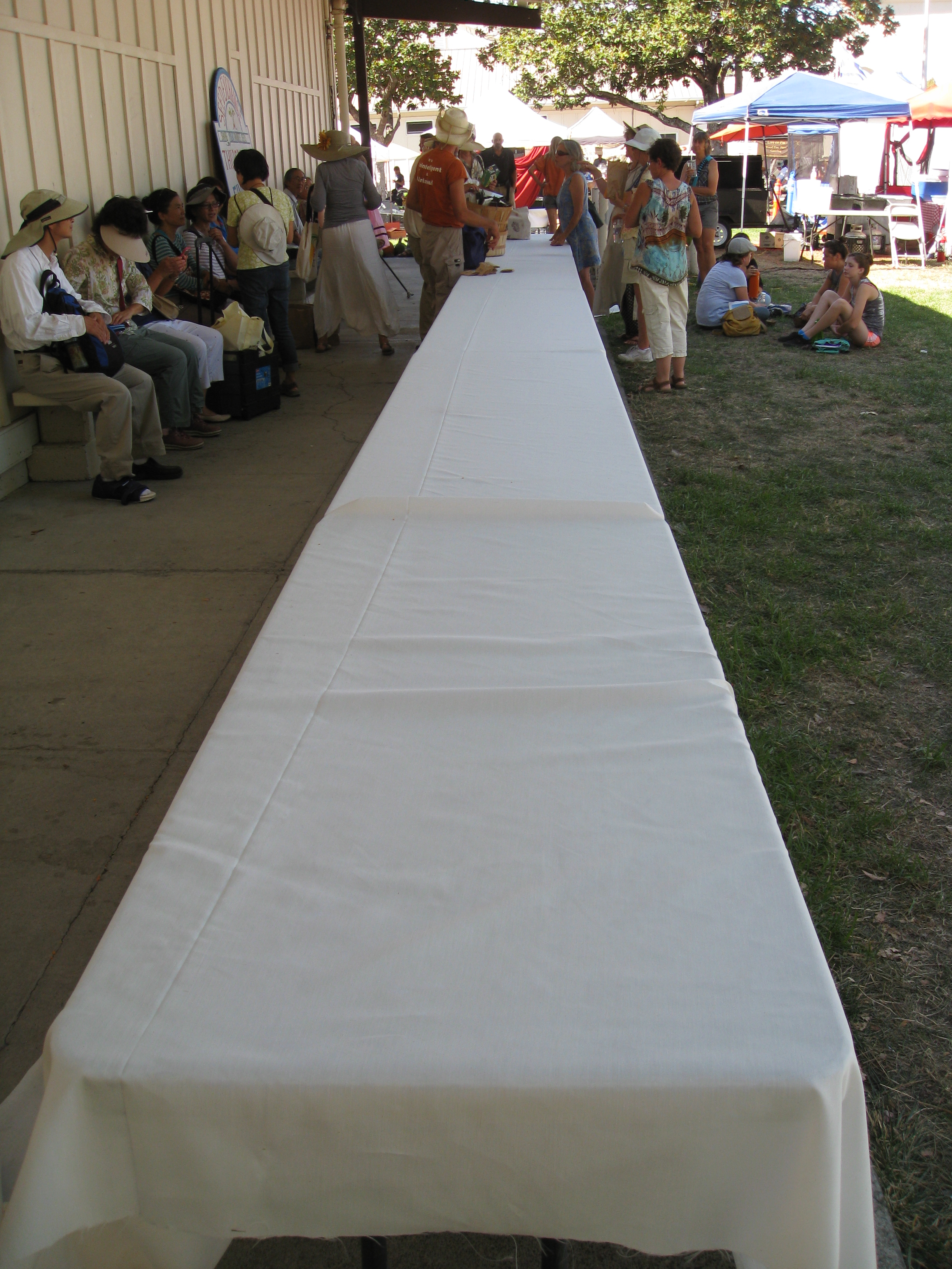 A long table sets the stage for the madness of the seed swap