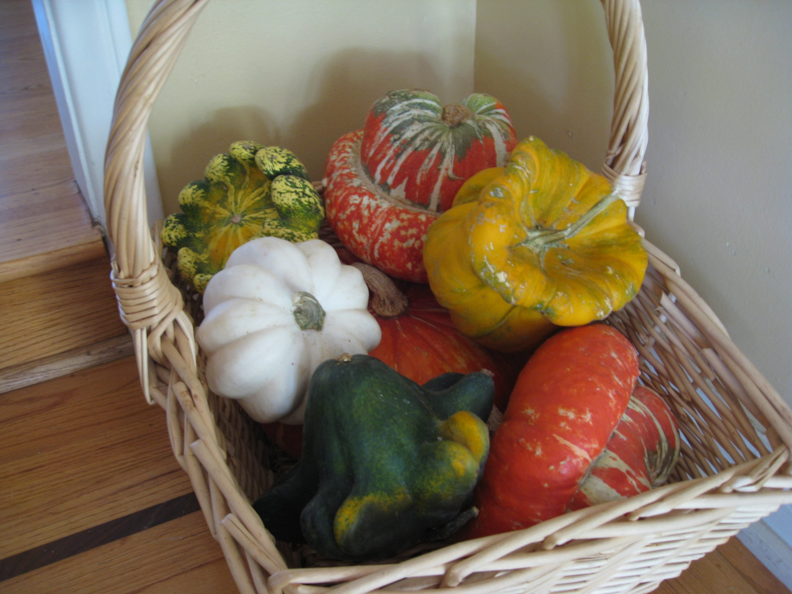 Read more about the article Wordless Wednesday: Harvest 2015