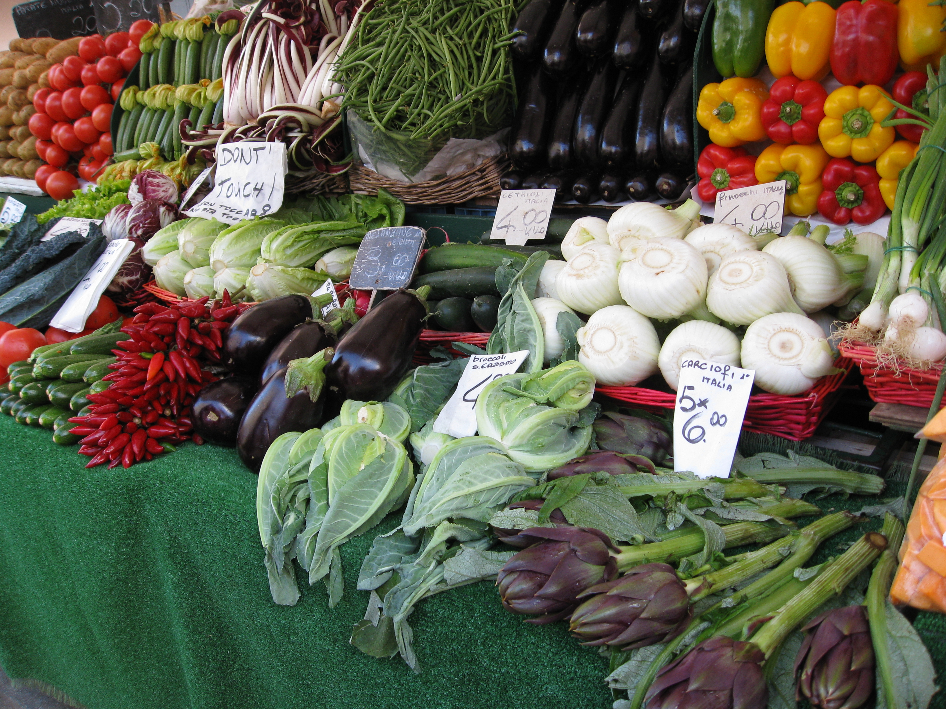 Fennel, chicory (otherwise known as radicchio in Italy), artichokes and more.