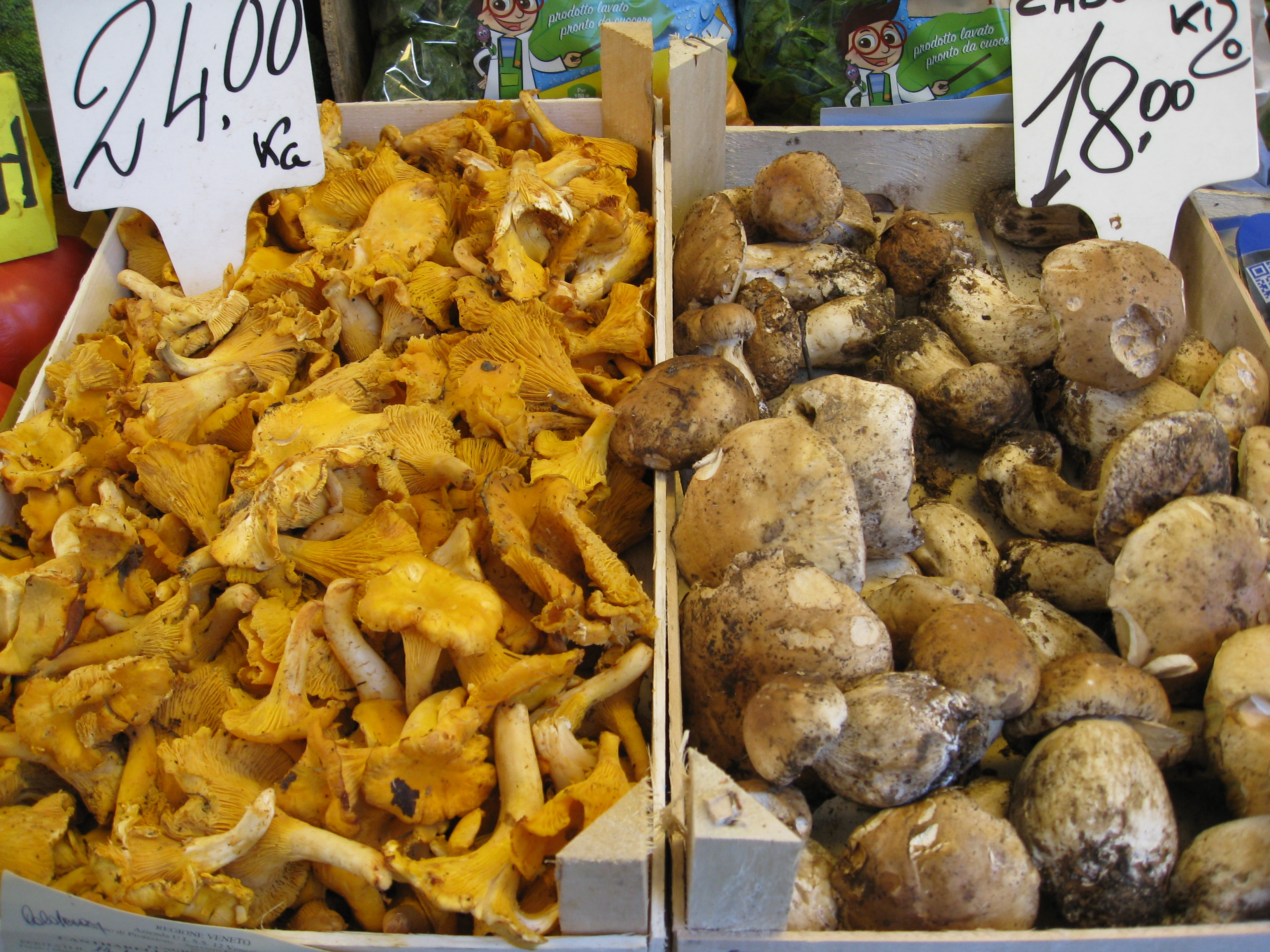 Mushroom were available everywhere. The Chianti region is famous for their porcini mushrooms. Practically every dish was flavored to perfection with them.