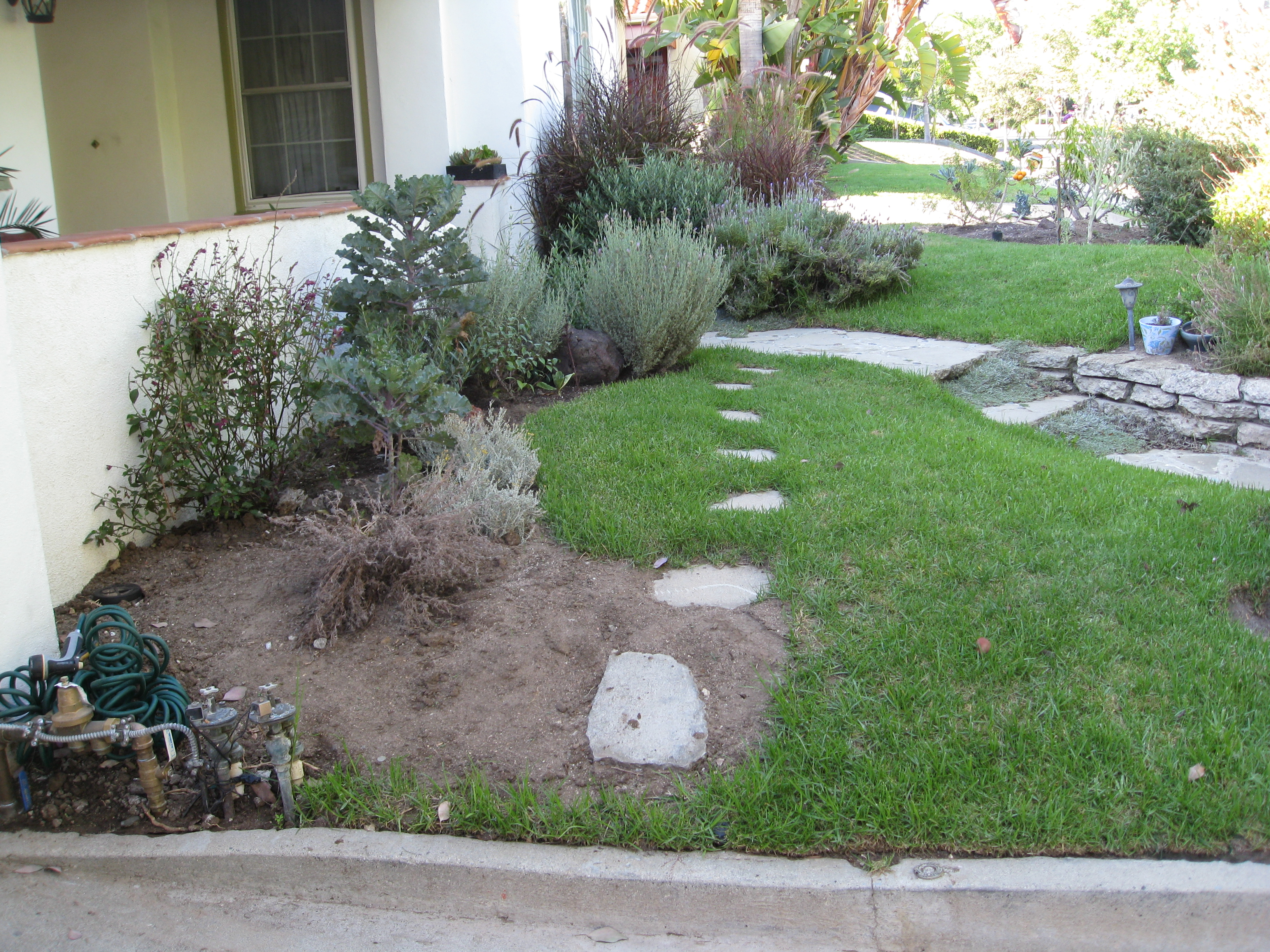 Lovely Minimalist Front Yard Landscaping