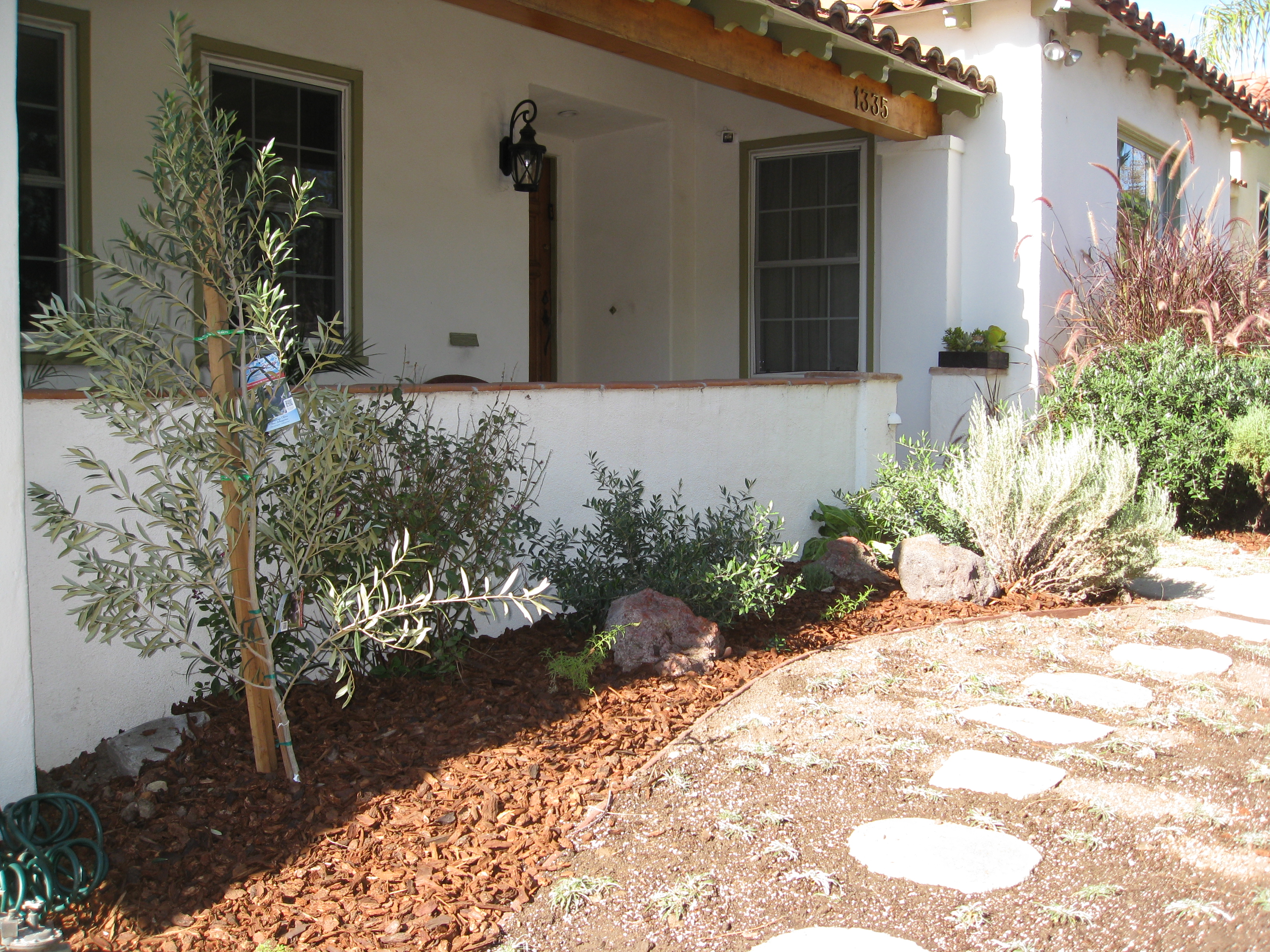 A new Spanish olive tree greets the homeowners as they walk to the front door.