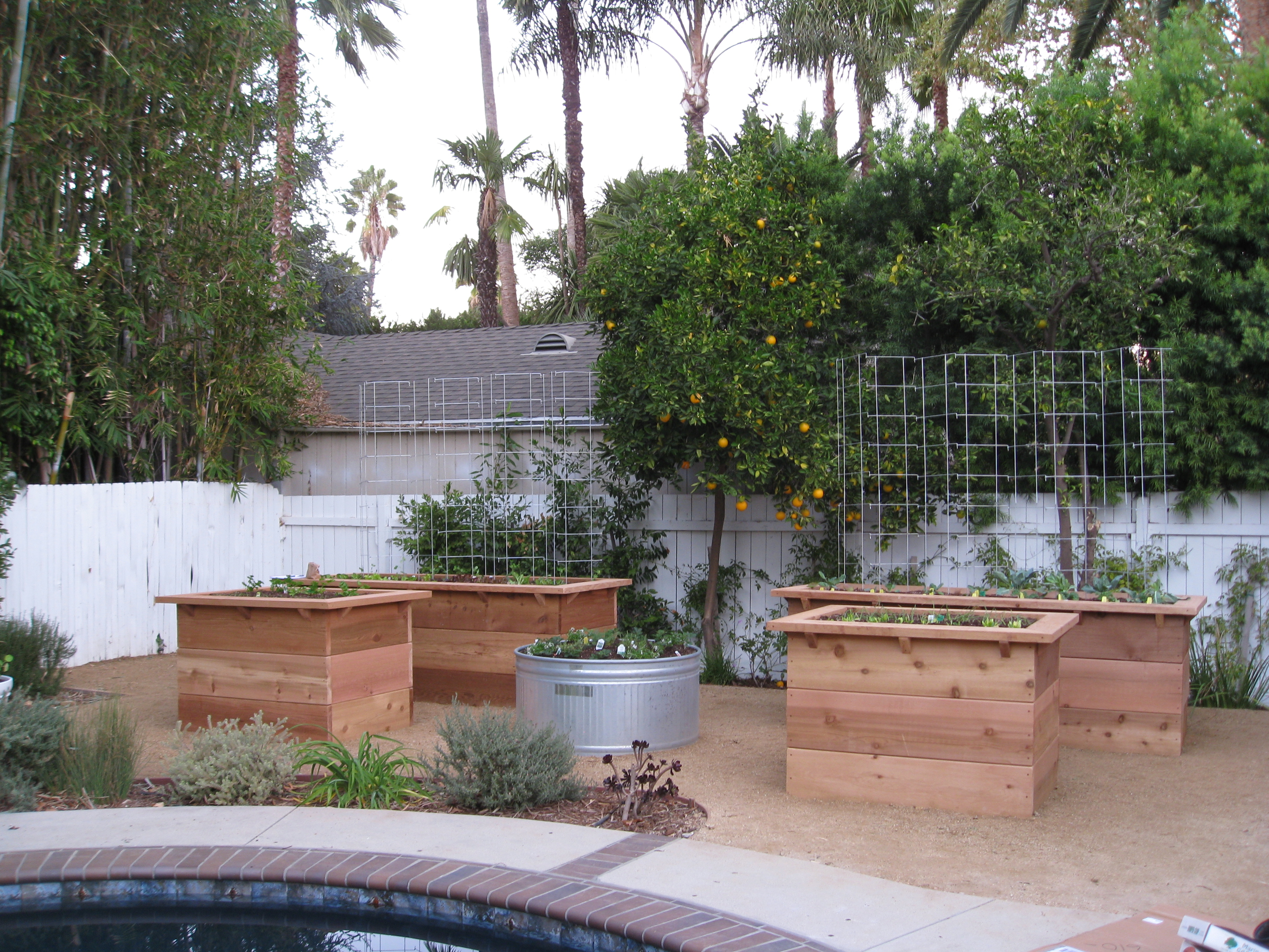 The finished garden, just planted with the homeowner.