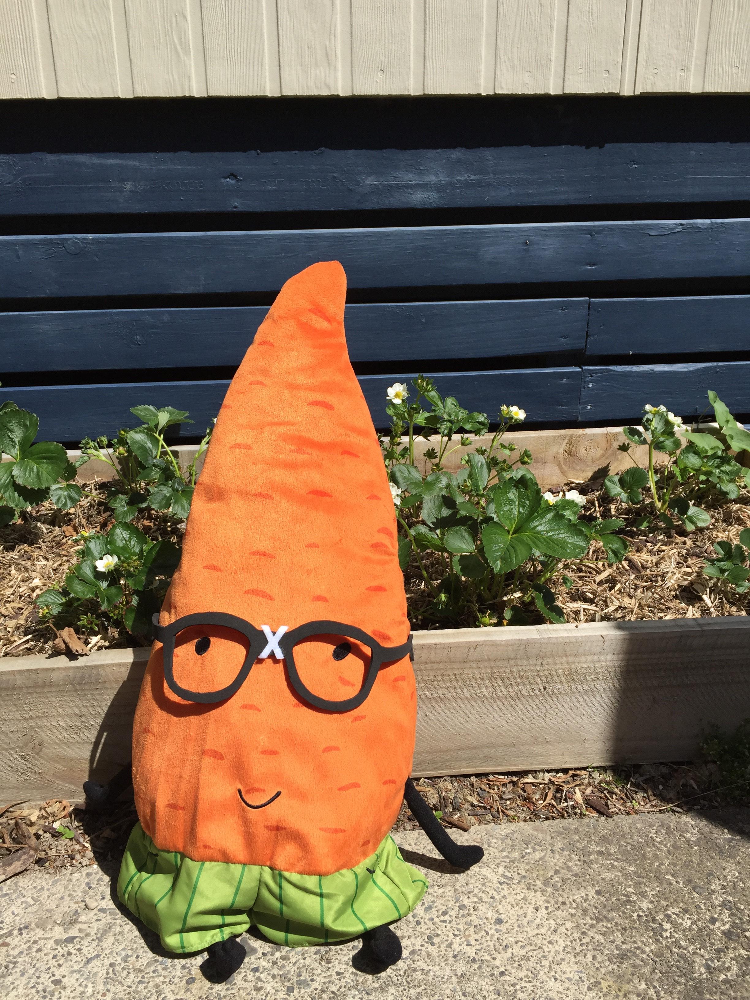 Gardenerd visits David's home garden to see his strawberries.