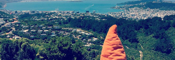 """""""Enjoying Wellington on a good day from atop Wright's Hill."""""""