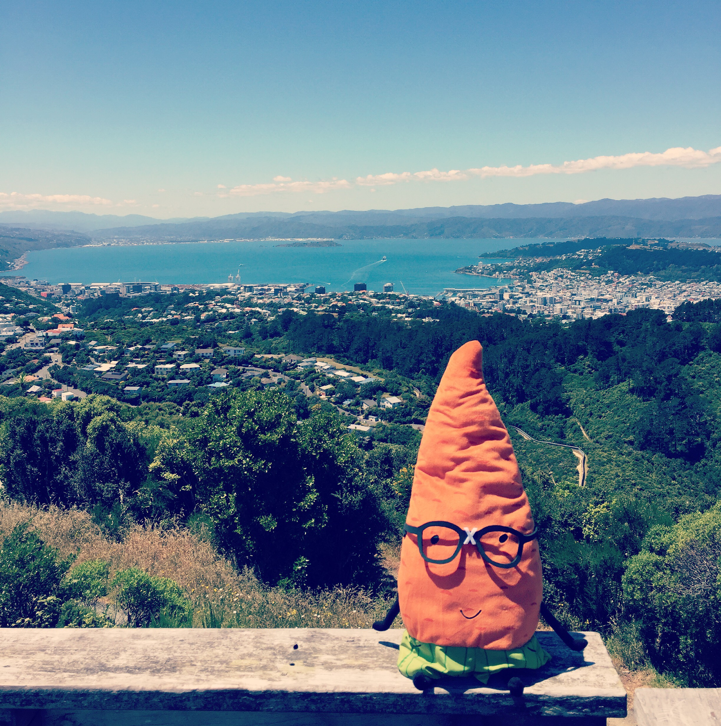 """Enjoying Wellington on a good day from atop Wright's Hill."""