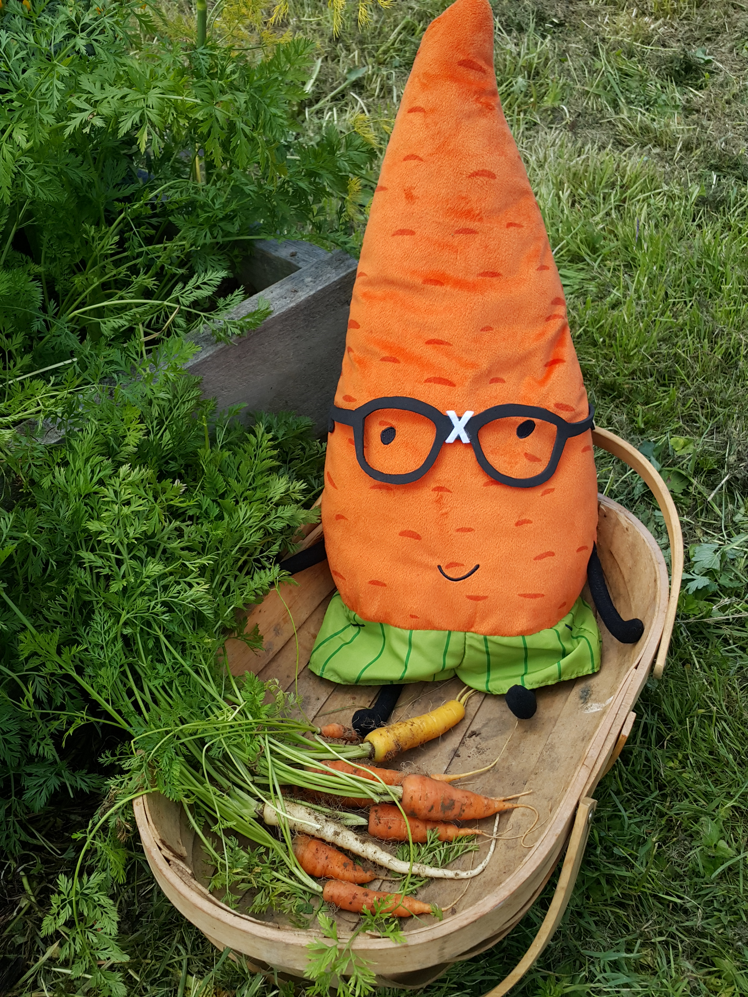 Carrots for the carrot.