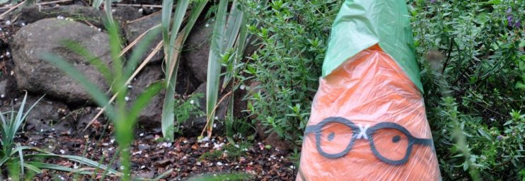 Where's Gardenerd sporting a rain hat and cloak. Our participants sure know to keep him clean and dry.