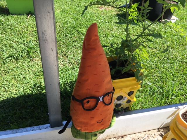 Container gardening ingenuity.