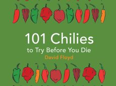 101Chilies2