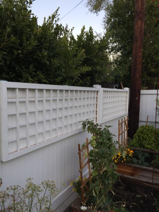 Josh built and painted these custom trellises for a family's crazy passion fruit vine.