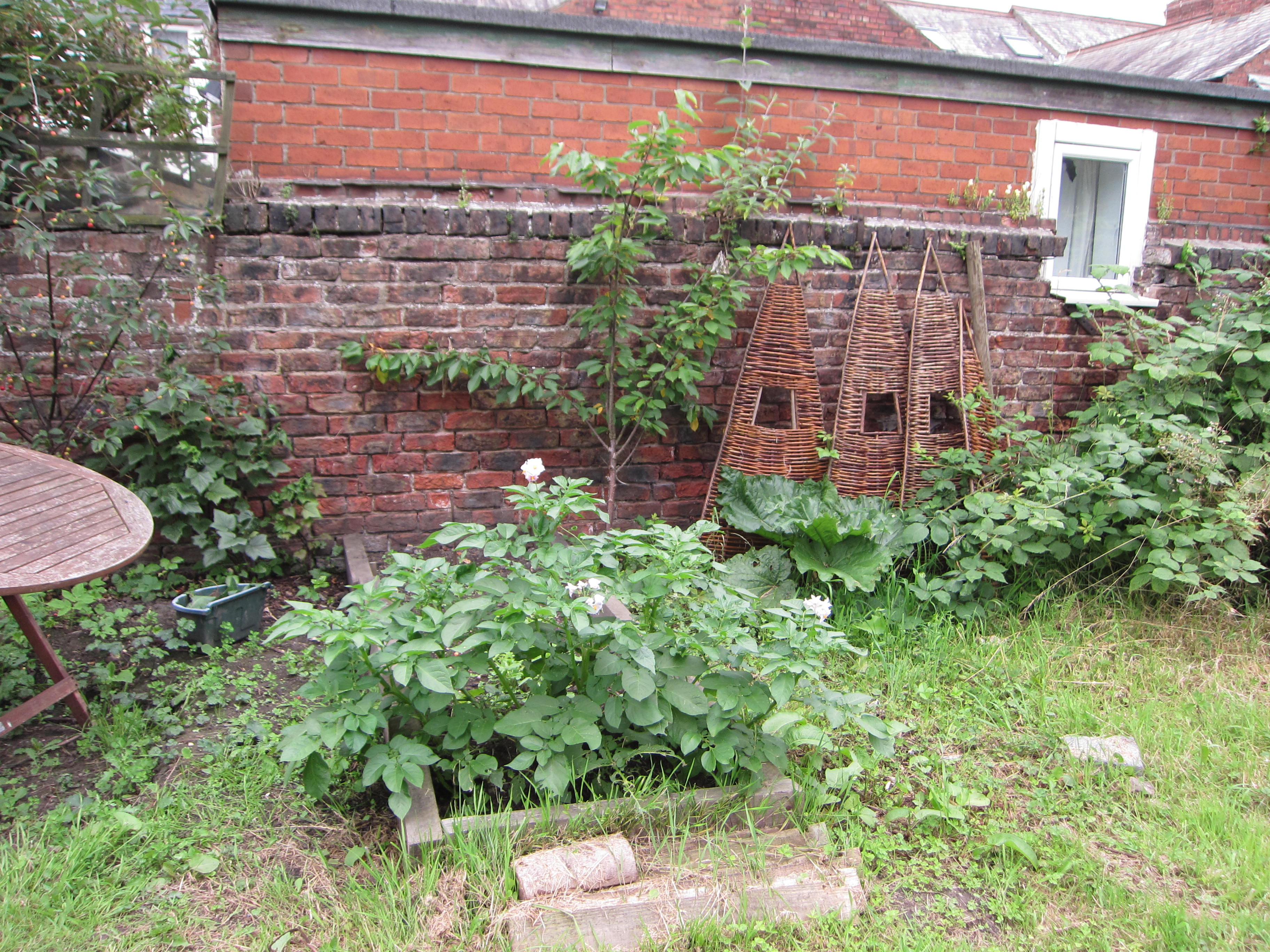 Charming trellises sit against the wall and a neighbor's window opens to the garden.