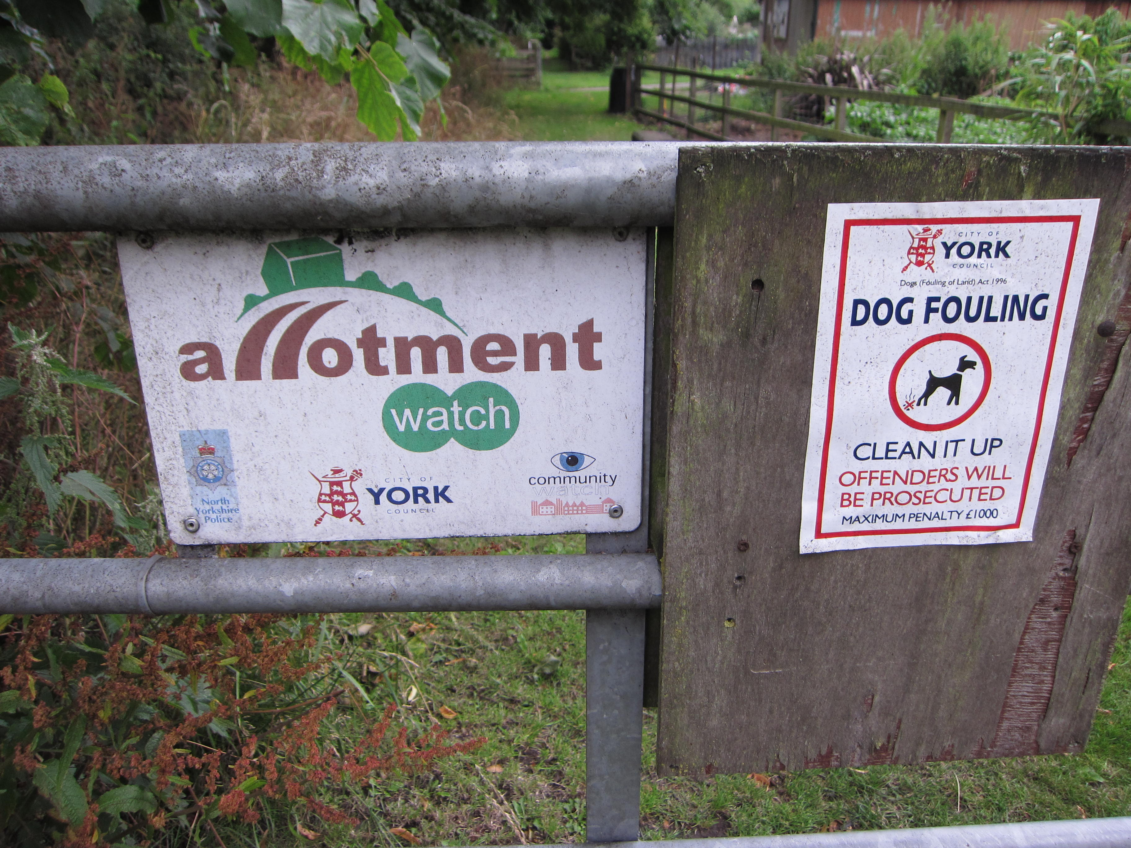 They call them allotments. We particularly liked the sign about dog fouling. So civilized.