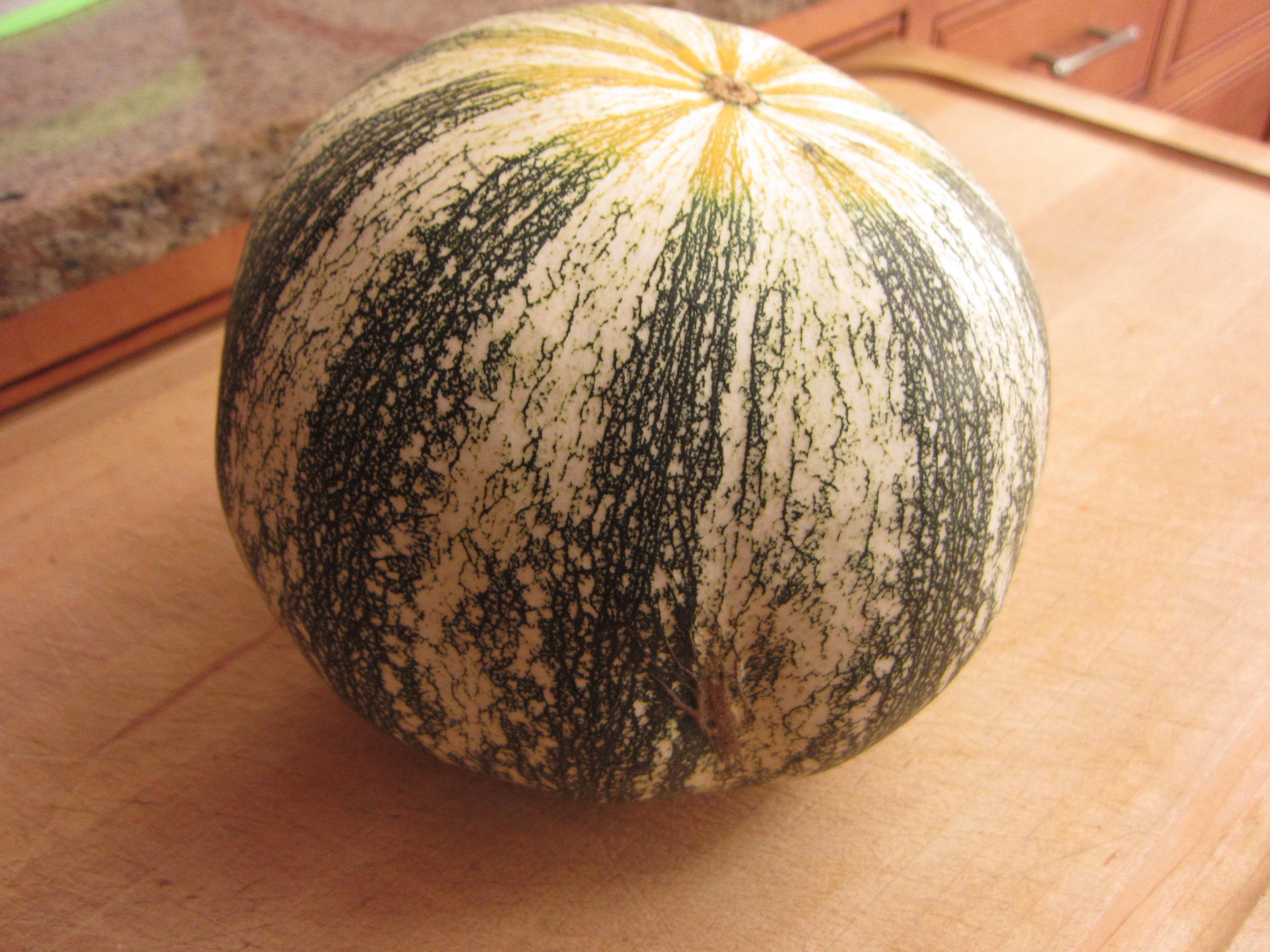 The pumpkin (ours anyway) was only about 8 inches in diameter.