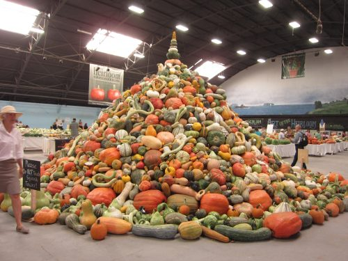 Read more about the article Wordless Wednesday: Heirloom Expo 2016