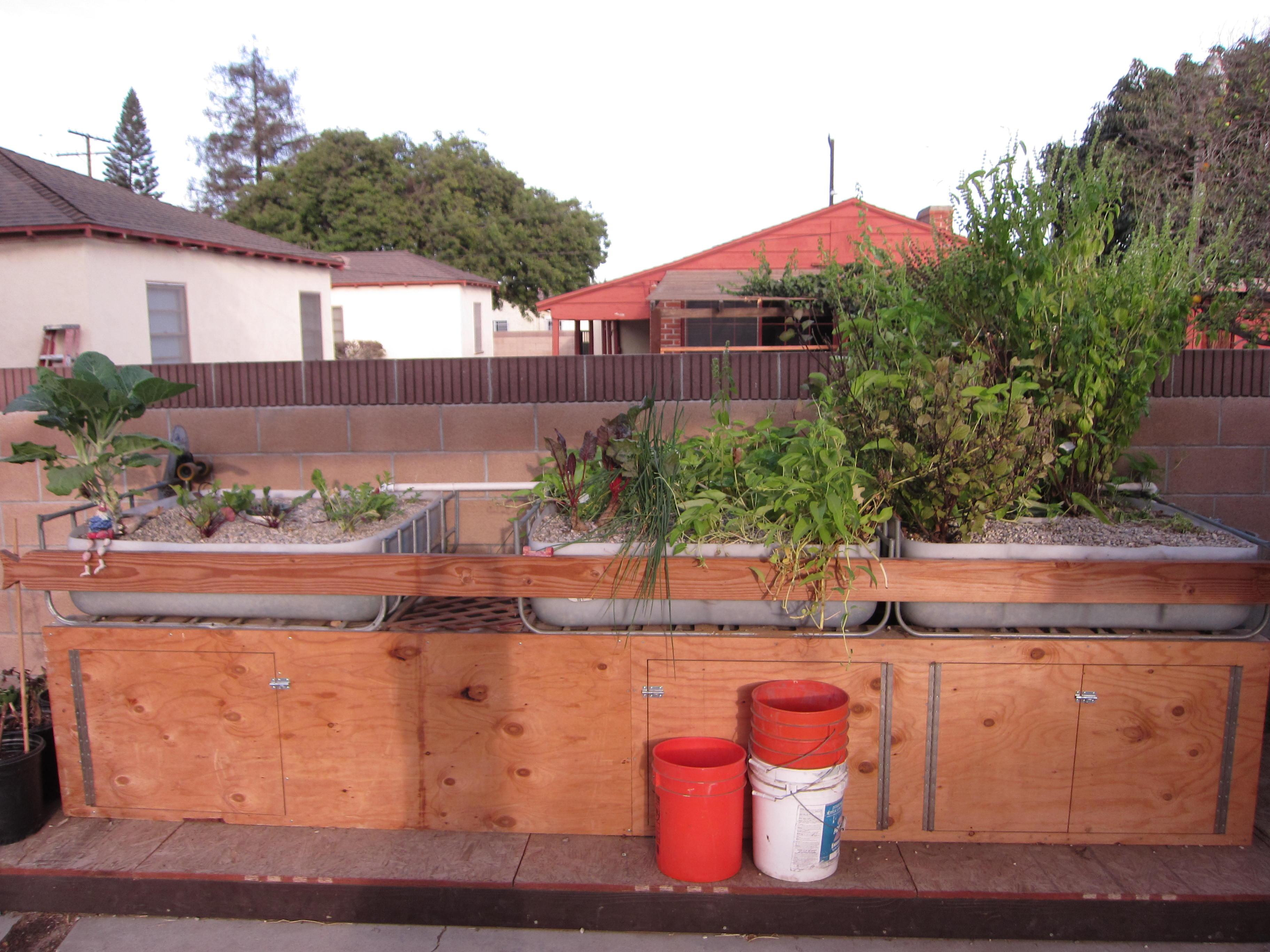 An aquaponics garden lines the driveway.