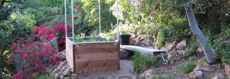The cage is tall to accommodate tomato cages and pea trellises as needed.