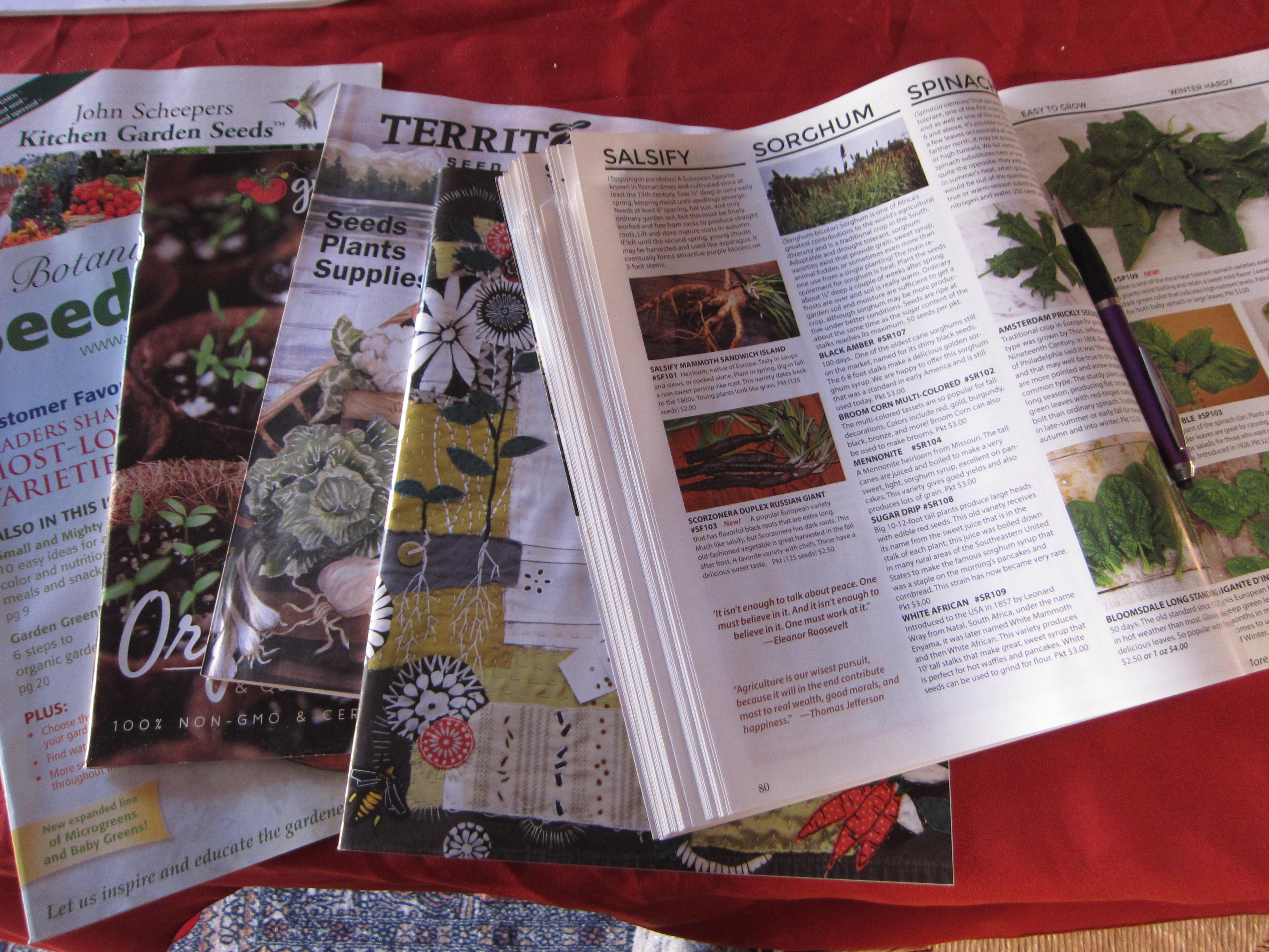 Indoor activities include perusing seed catalogs. Soon we'll be starting seeds for warm-season crops.