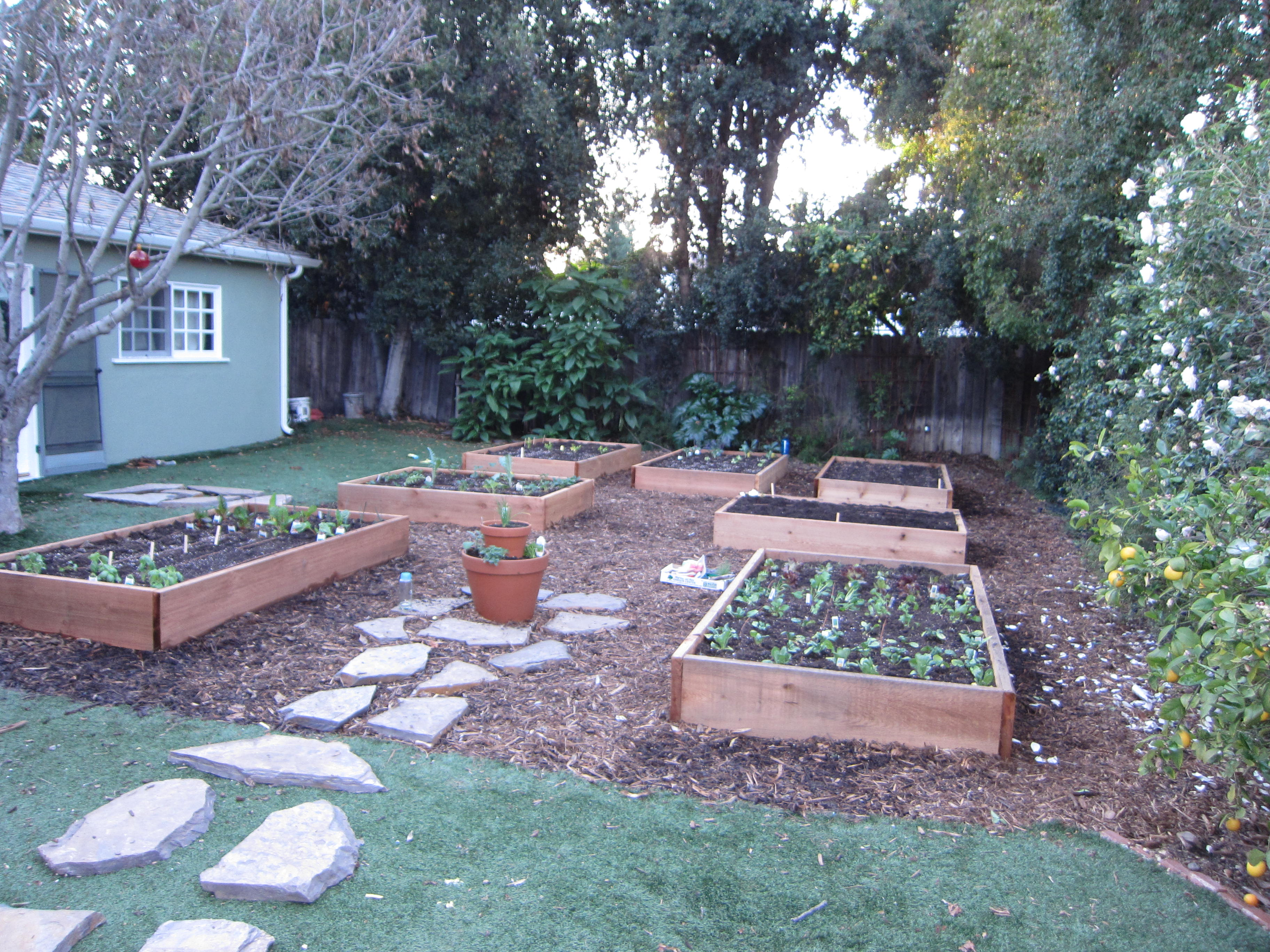 A new garden for a new gardener. She'll have plenty of produce to share all year long.
