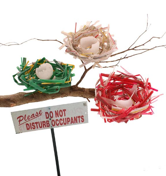 Trash artist Marina Debris creates art from items found washed up at the beach. These bird nests are made from discarded plastic straws.
