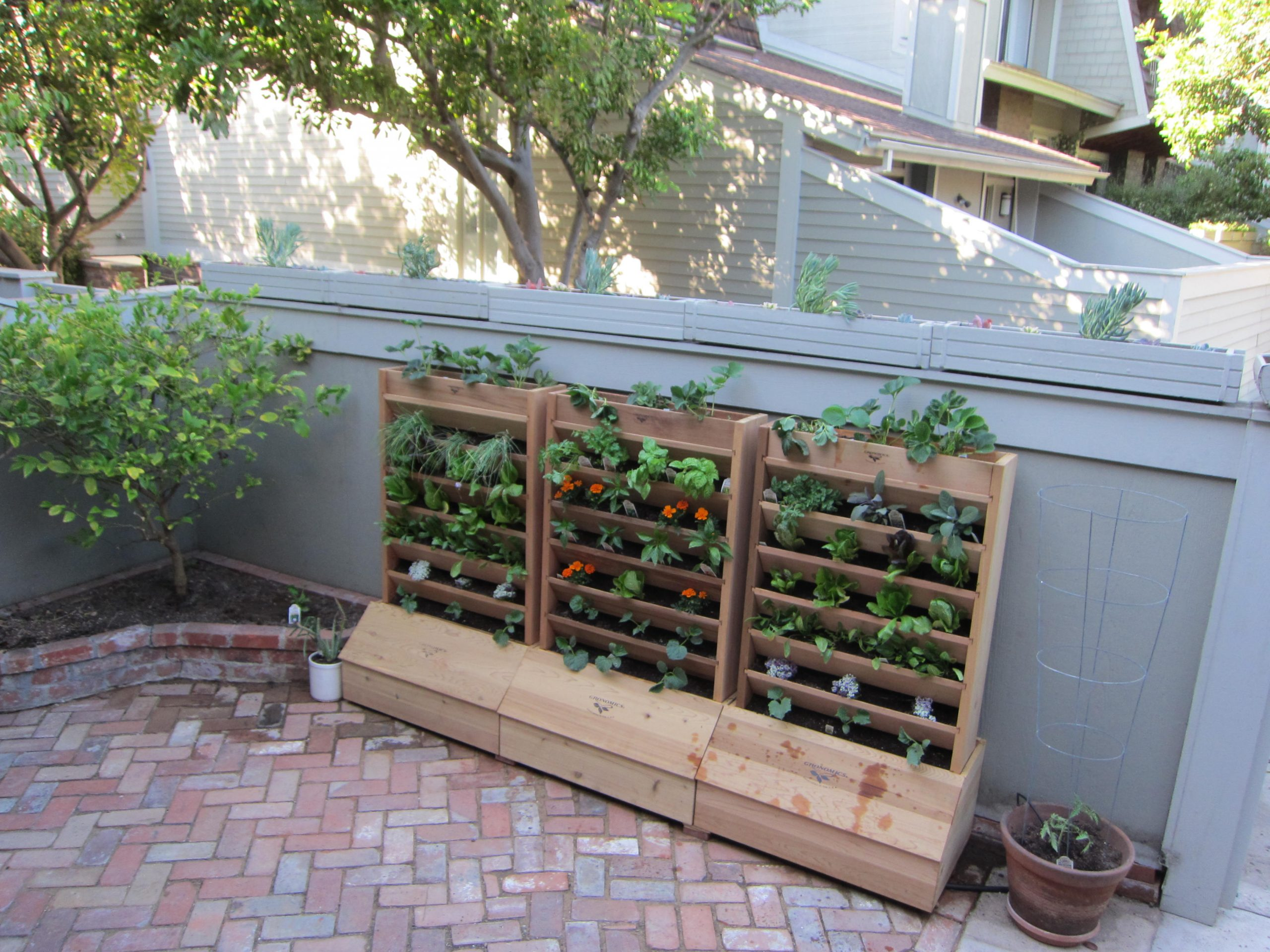 Read more about the article Design: Vertical Patio Garden Delight