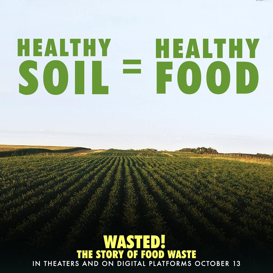 review of food waste Request (pdf) | food waste and the f | throughout the world, much food produced is wasted the resource impact of producing wasted food is substantial however, little is known about the energy and water consumed in managing food waste after it.