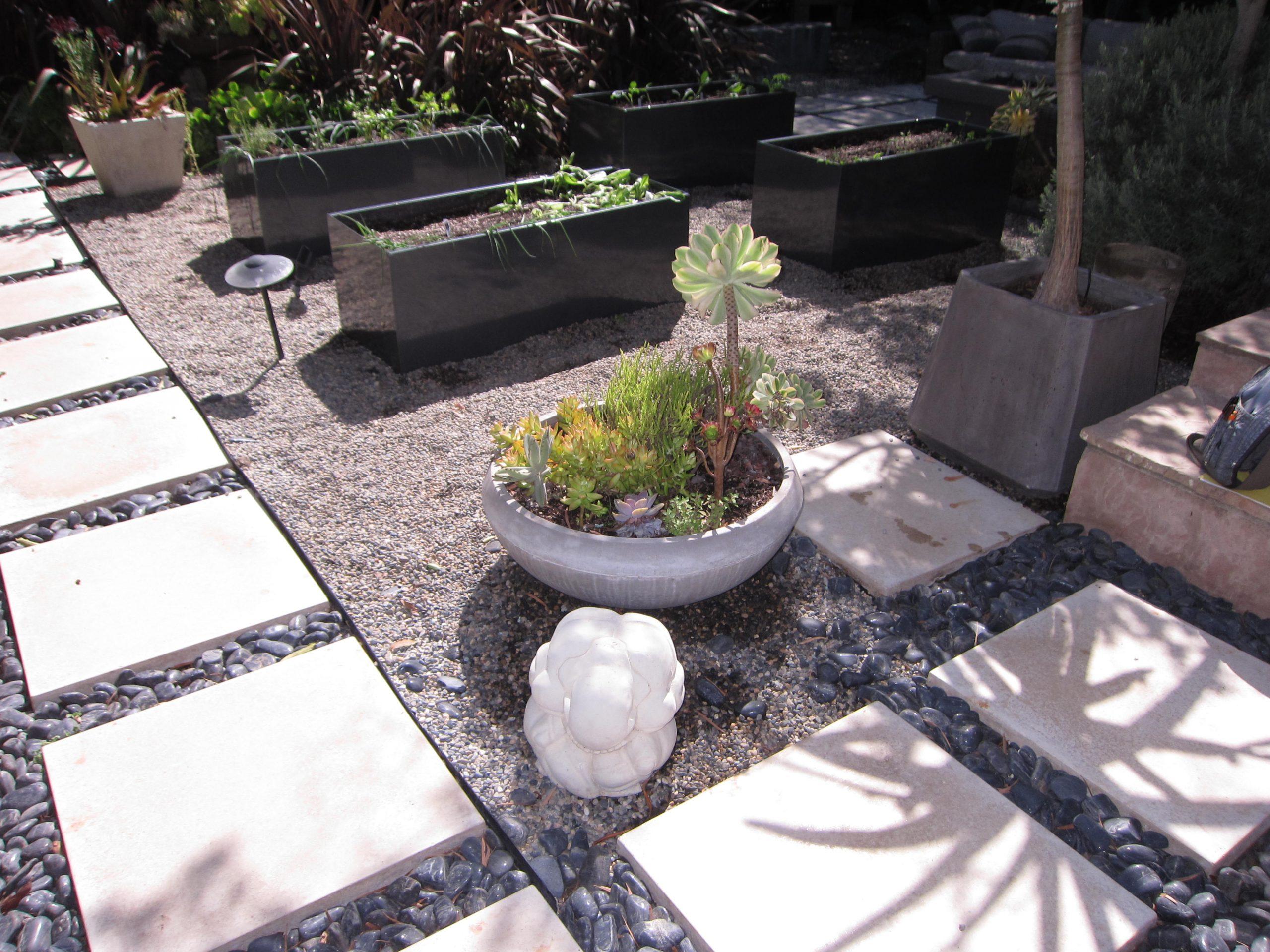 Read more about the article A Sleek, Modern Garden