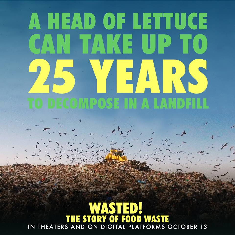 landfill wasted