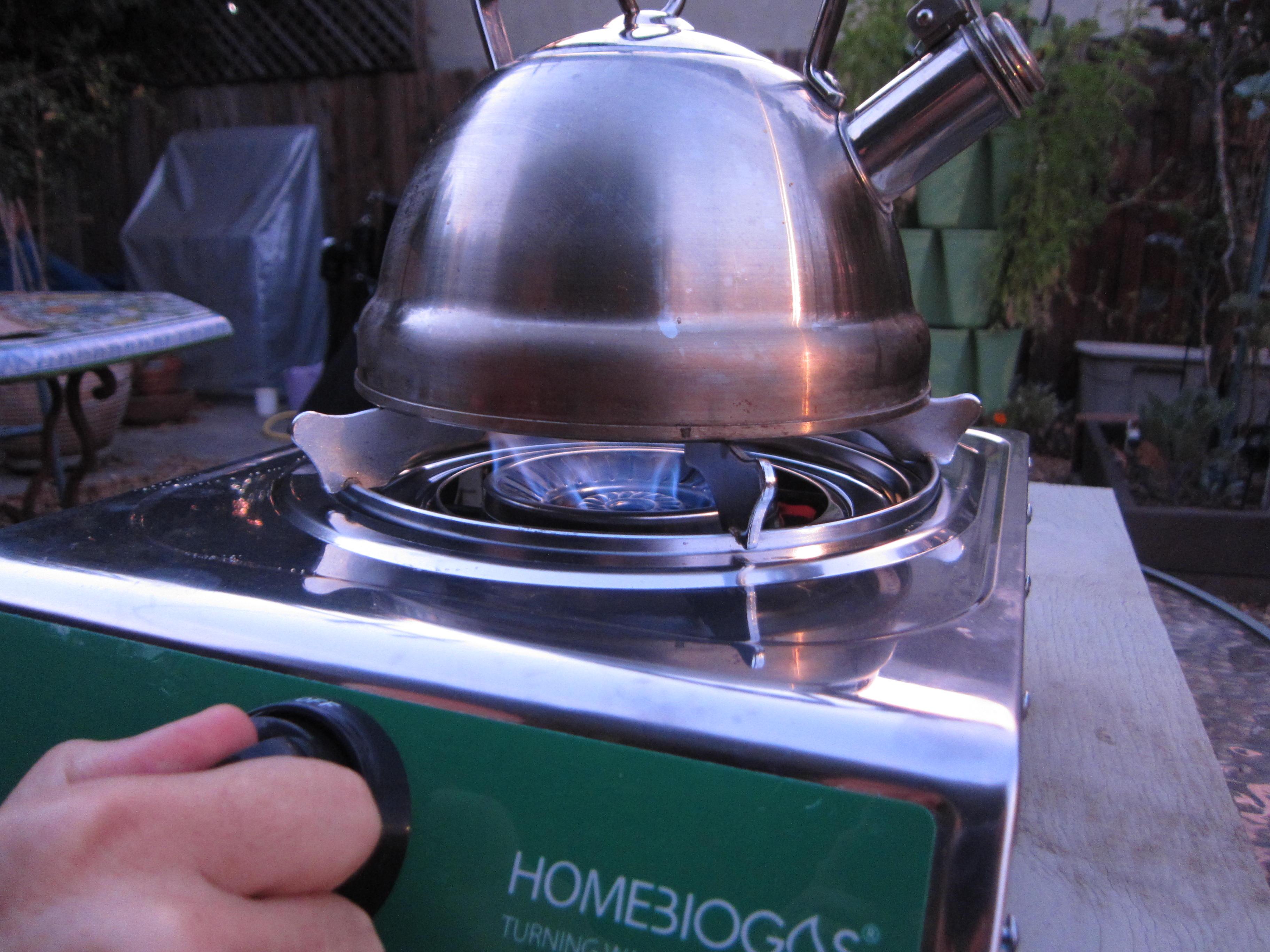 Home BioGas blue flame