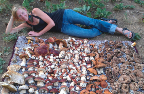 Read more about the article Podcast: Foraging with Erica Wohldmann