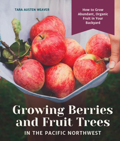 Growing Berries and Fruit Trees