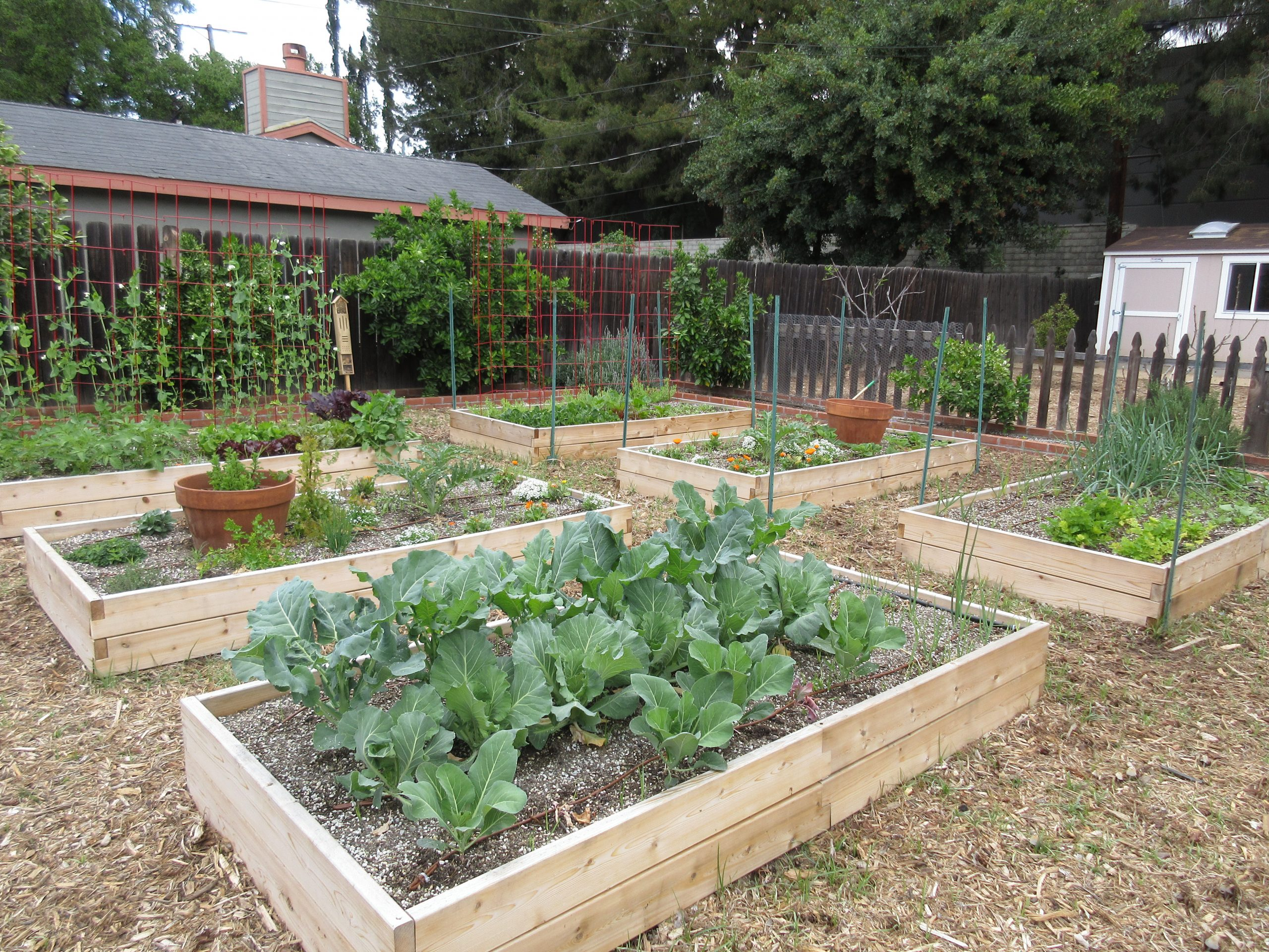 You are currently viewing Design: Urban Farm