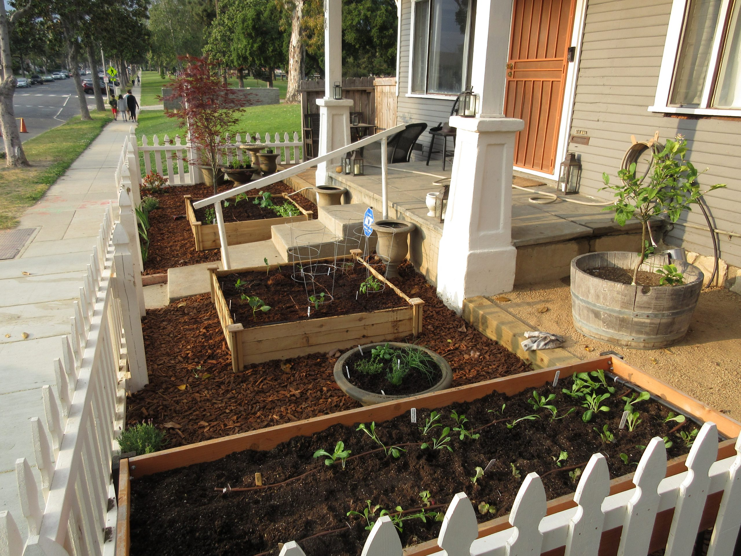 Read more about the article Design: Tiny Front Yard Farm