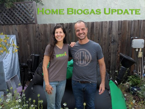 Read more about the article YouTube: Home BioGas Update