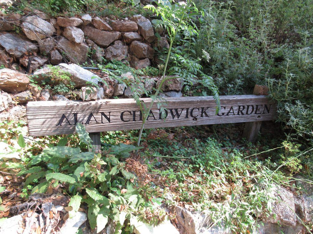 Alan Chadwick Garden