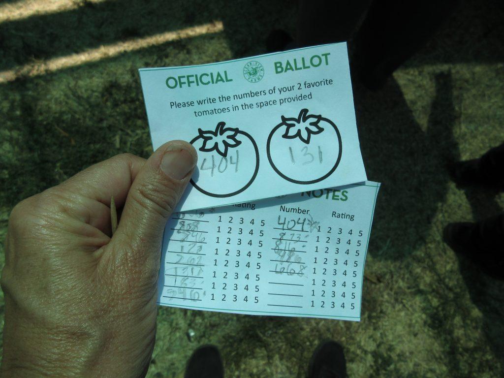 tomato tasting ballots