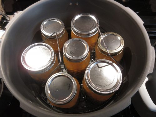 Read more about the article Pressure Canning Beans – A New Adventure